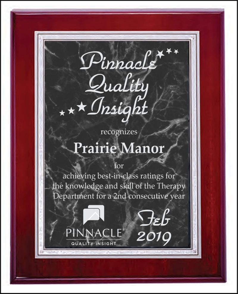 Pinnacle Award Badge
